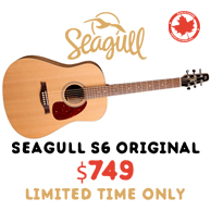 Seagull June Promotion at Participating Dealers
